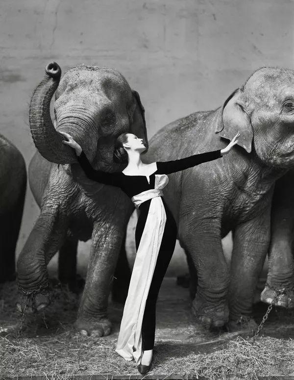 人物 前《VOGUE》主編時尚屆女魔頭 — 戴安娜·弗里蘭 形象穿搭 第18張