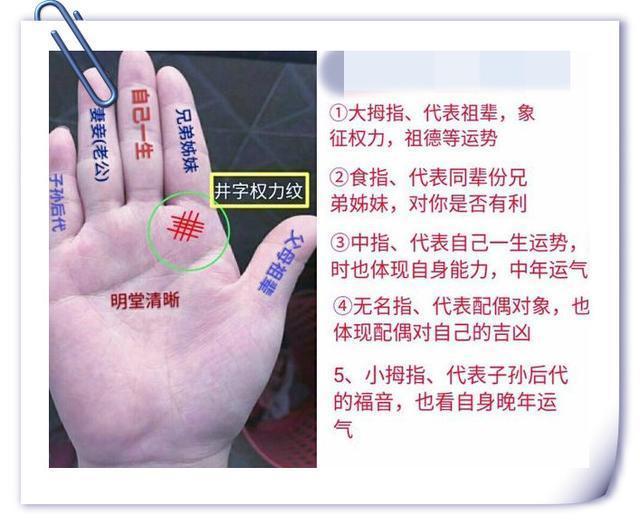从手指,手纹,手心来精准分析你的命运吉凶走势
