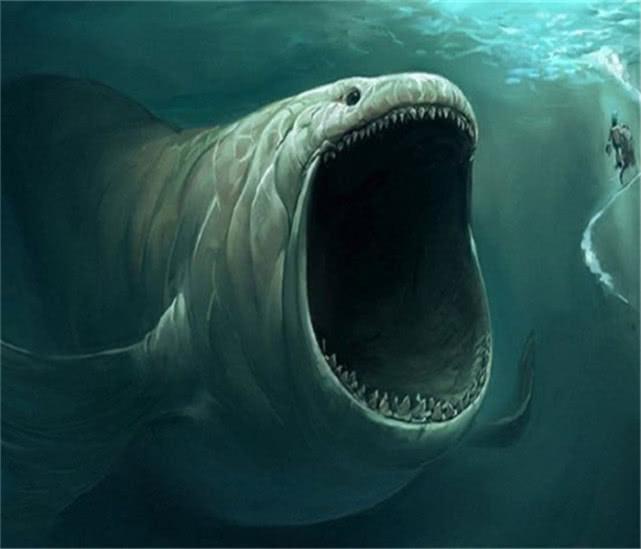 9W米的海底到底有什么?专家:人类在这些生物面前就像是芝麻!