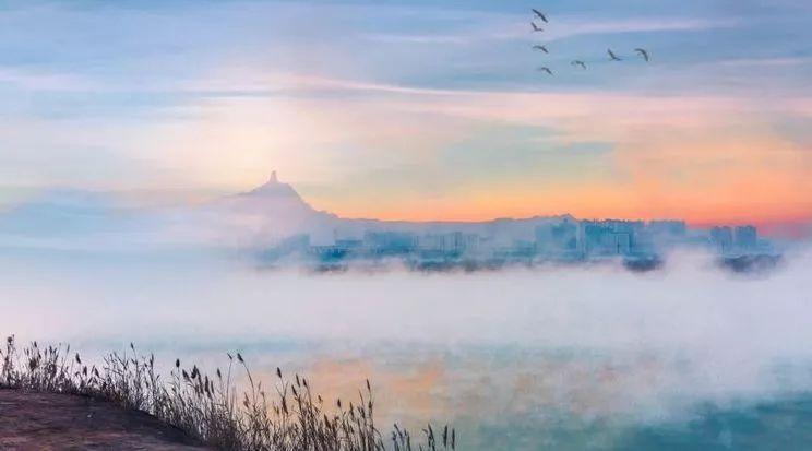 安排上了丨乌海12个月的风景美翻了