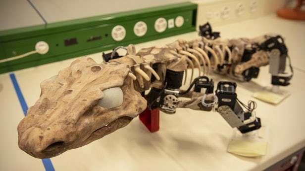 仿真机器人OroBOT展示3亿年前的动物如何行走