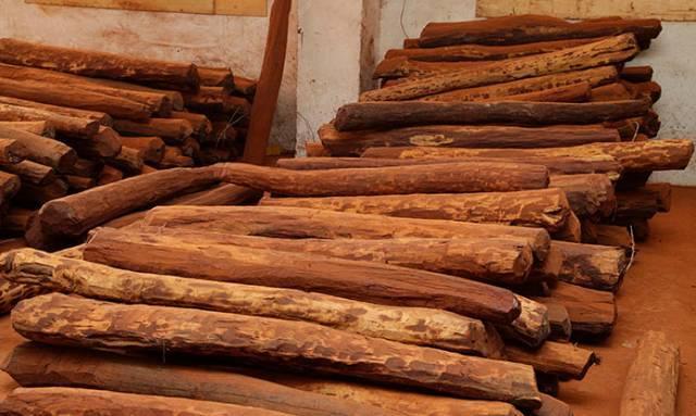 可传世红木家具需过四关-黄杨木雕
