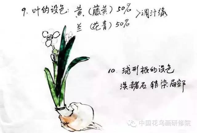 写意水仙花的画法