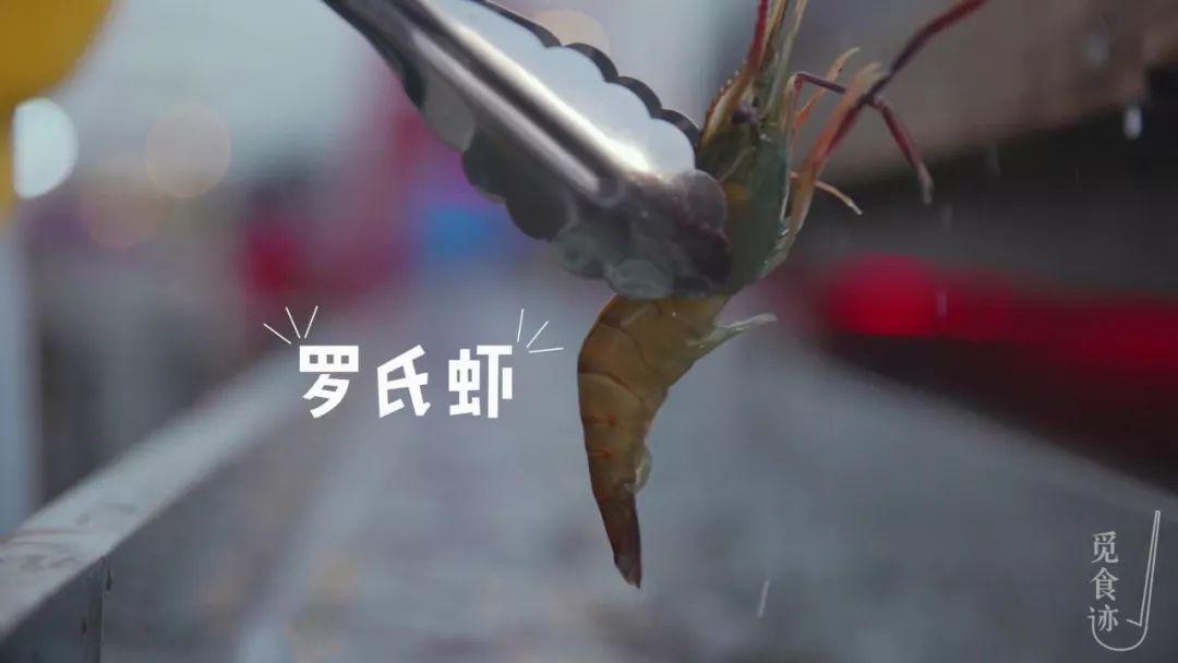 中国最好的砂锅啥牌子