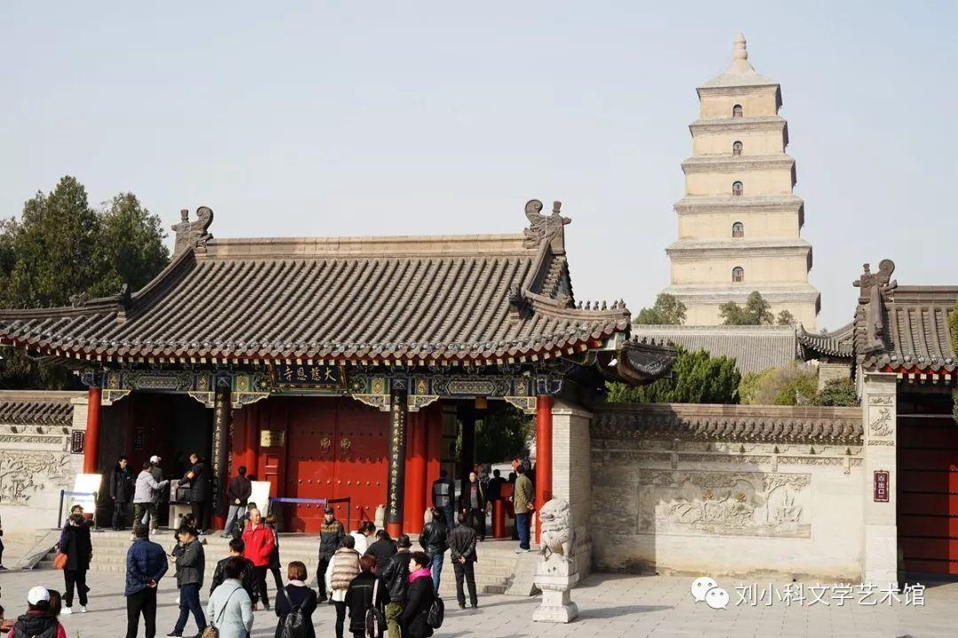 孔雀丨我围着大雁塔转了一圈城散文别墅区郑北图片