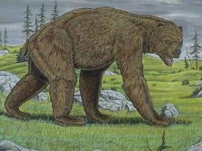 史上最大的熊类——短面熊