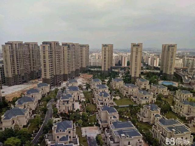 晋江张林多少人口_哈尔滨商业大学张林