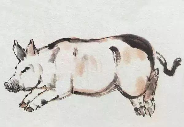 猪年画猪,简单易学,一看就会!图片