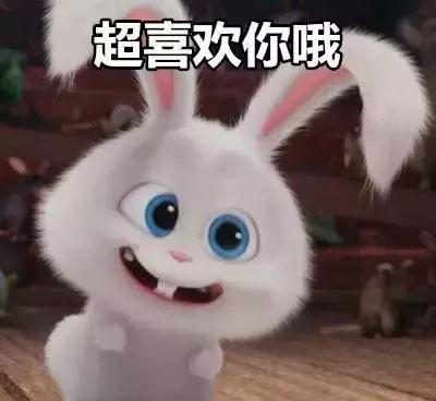 个性男女生兔子头像&闺蜜头像