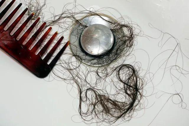 动物那么多毛都还在长,我头发这么少怎么就一直掉?
