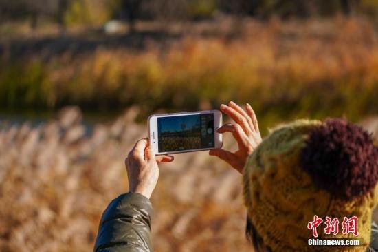 德勤:中国用户手机更换频率明显高于全球
