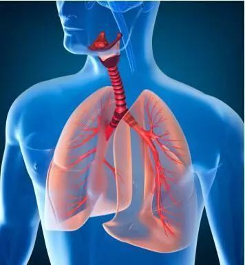 【健康】维护呼吸之道,对自己的生命负责!