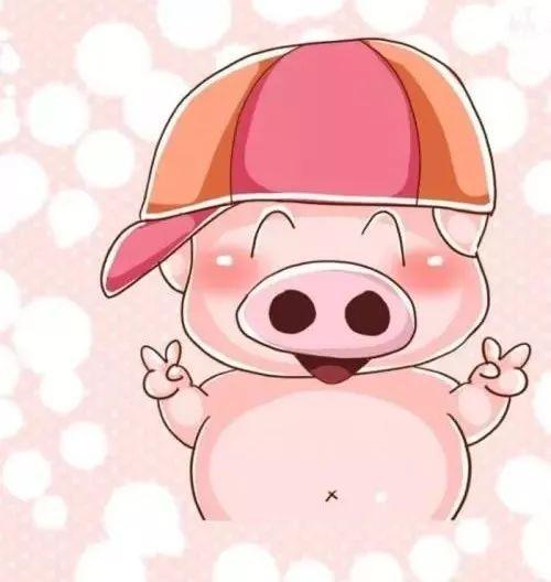 2019||做一只幸福的猪可好?