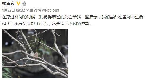 台湾作家林清玄去世,这些日本作家的文章也不能错过