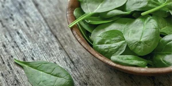 范志红 | 绿叶菜能让人的脑子更好用吗?每天吃够这个量真有用!