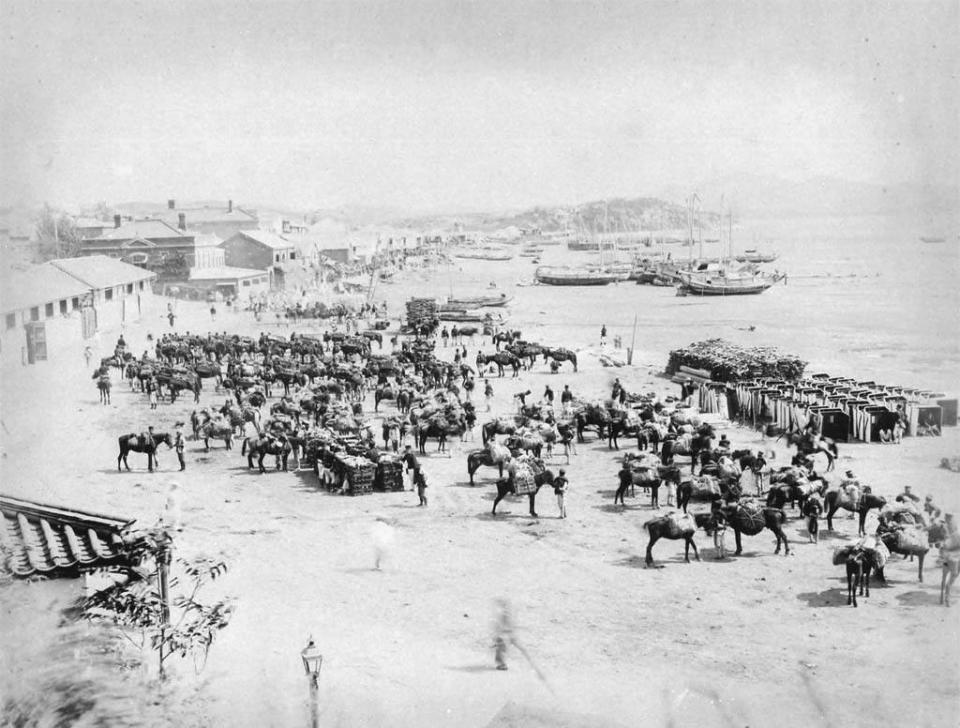 甲午战争的失败 宣告了清朝洋务运动破产