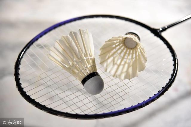 羽毛球运动的基本技术主要由两大部分组成你知道吗