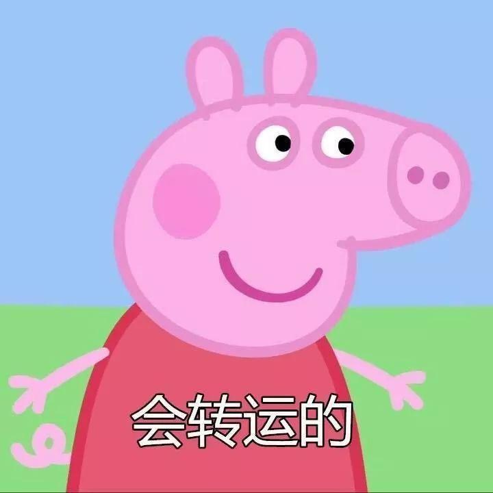 猪年摸猪头,万事不用愁 猪年摸猪腿,顺风又顺水