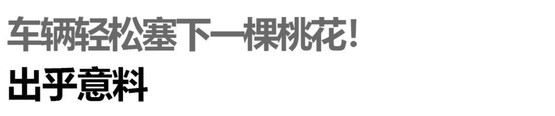 新一代凌派长测:春节回家被羡慕是别人家的车_新凤凰彩票app