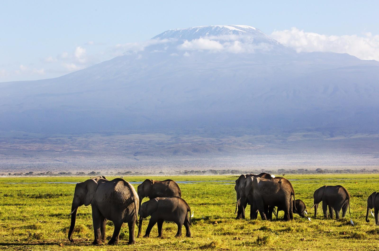 非洲伊甸园:大半国土为国家公园,拥非洲三大湖泊,大陆最高峰! 作者: 来源:李不言说旅游