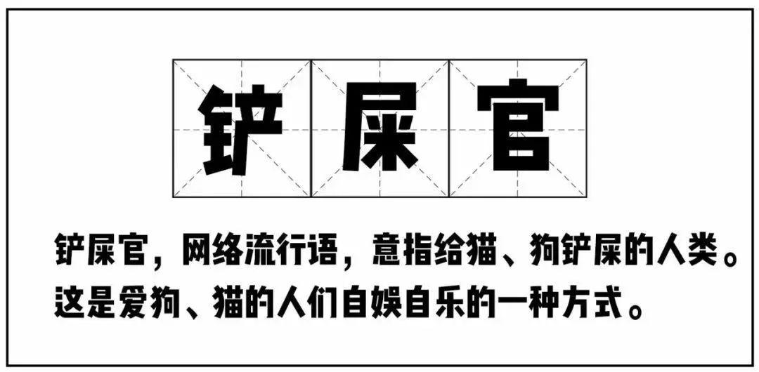 在广州,月薪5千,存款为0,却义无反顾地养了条狗!(图1)
