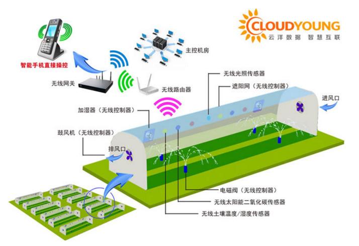 为设施农业提供物联网解决方案,「云洋数据」获 1000 万元天使轮融资