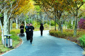 500米见园 1公里见水 走,公园里跑步去