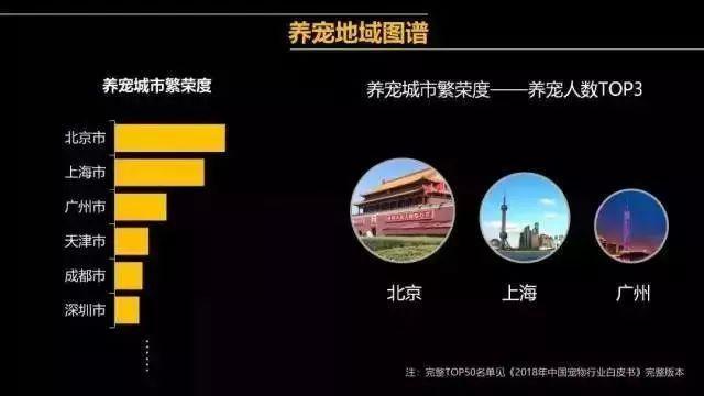 在广州,月薪5千,存款为0,却义无反顾地养了条狗!(图2)