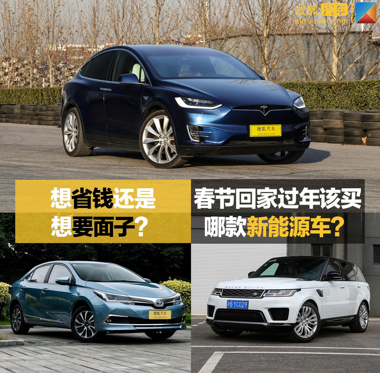想省钱还是想要面子? 春节回家过年该买哪款新能源车?(第1页) -