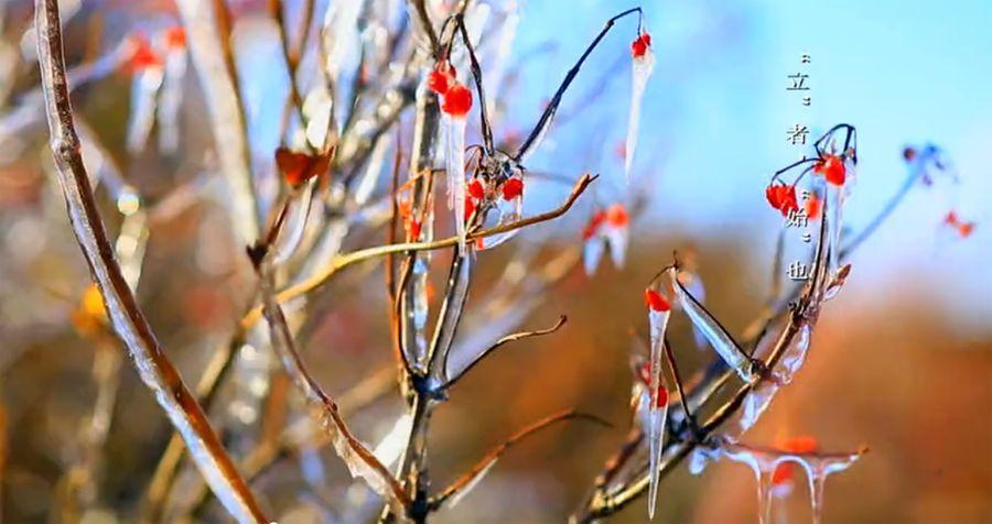 春到人间草木知