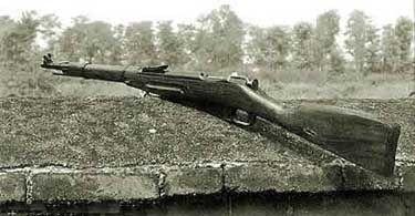 小米加步枪什么意思_小米加步枪,可是你知道加的是什么步枪吗_补给
