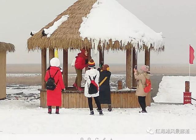 2019盘锦·中国最北海岸线红海滩冰凌穿越徒步大_红海湾自助游