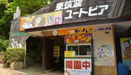 日本最荒涼的動物園,每年虧損達30萬元,還有存在的必要嗎?_園區