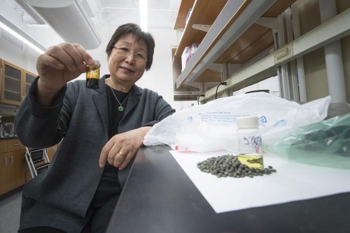 [视频]塑料垃圾变废为宝:科学家将其变成燃料来源