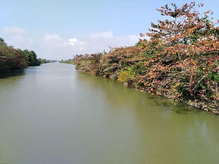 水上楓 文春