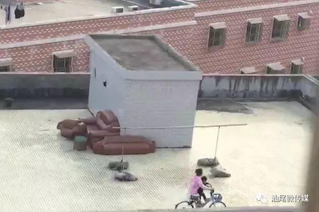 前方高能!海豐竟有人把共享單車騎上天臺玩…