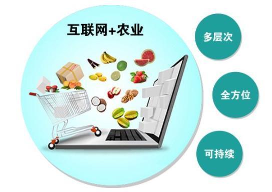 互联网+(中国农副产品门户网) 农产品推进模式,21世纪最火爆 有用财富密码