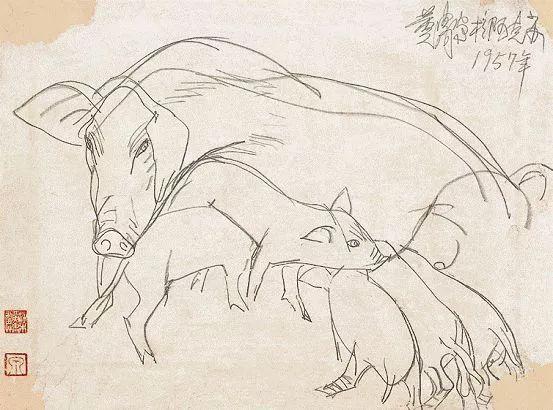 齐白石 徐悲鸿 黄胄 黄永玉 韩美林画的猪,别有意趣