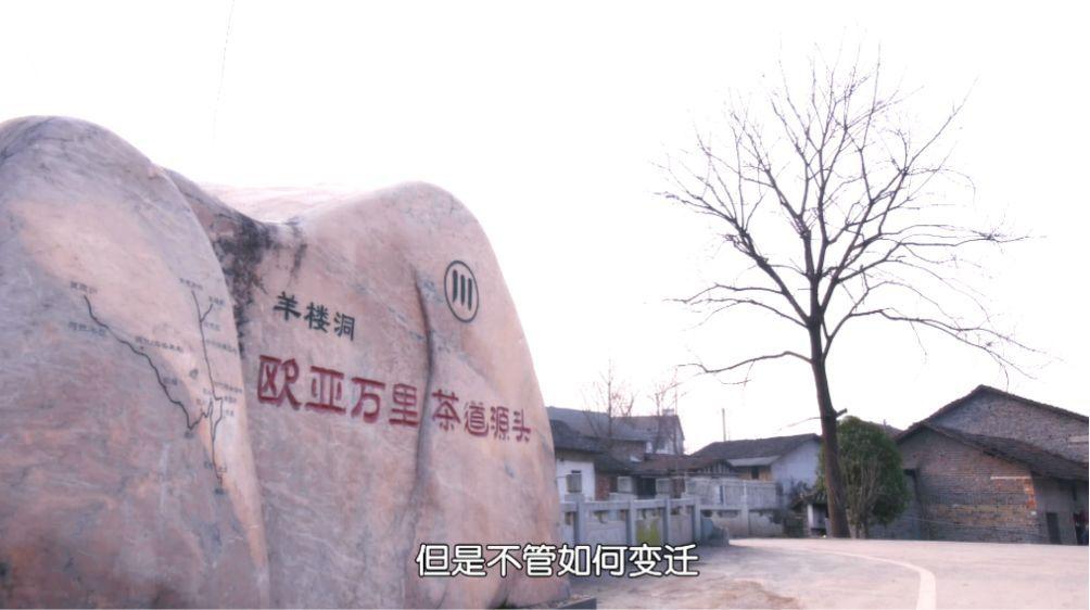 """万里茶道——赵李桥""""川""""字茶的商业智慧"""