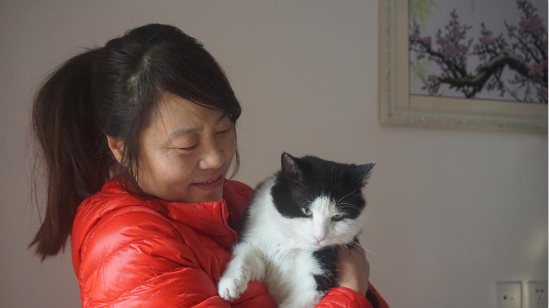 """15年里她救助了100只流浪猫50条流浪狗,""""既然爱就别伤害它"""""""