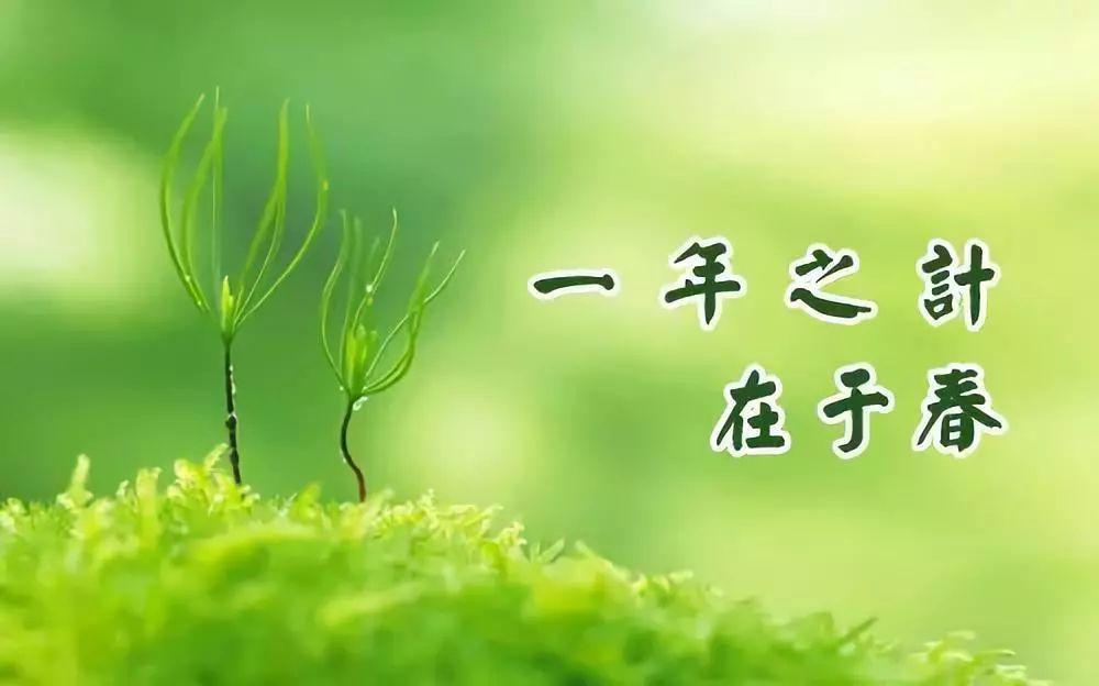 春季养生记住这六个字春捂养胃护肝