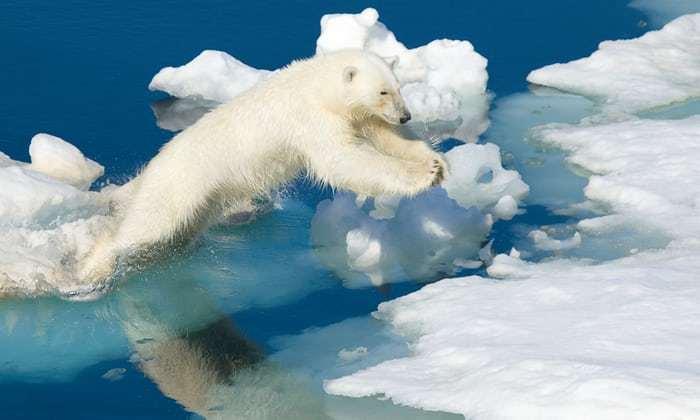 1/10 的上市公司说气候会影响业绩,靠天吃饭是借口吗?