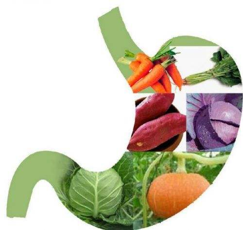 胃不舒服怎么办?慢性胃炎和胃痛的饮食建议有哪些?