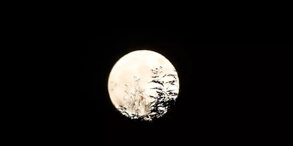 雨水巧遇元宵,一起看超级月亮