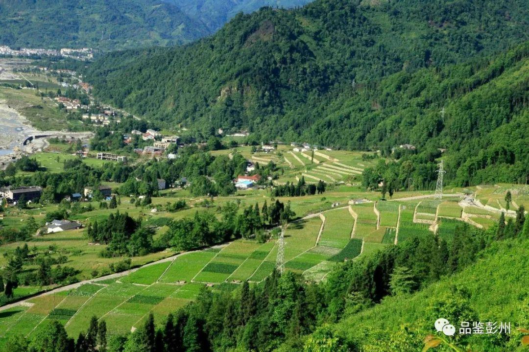 一木都是相生相伴的,宁静的村落,浸脾的空气,造就了这样的田园山水