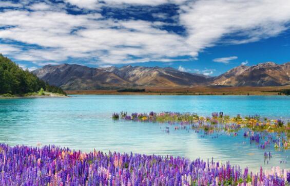 天津环球教育:新西兰南岛的著名必去景点