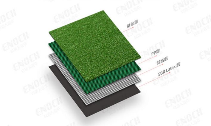 万博体育app怎么玩足球场草皮是什么草(外观、使用方法)