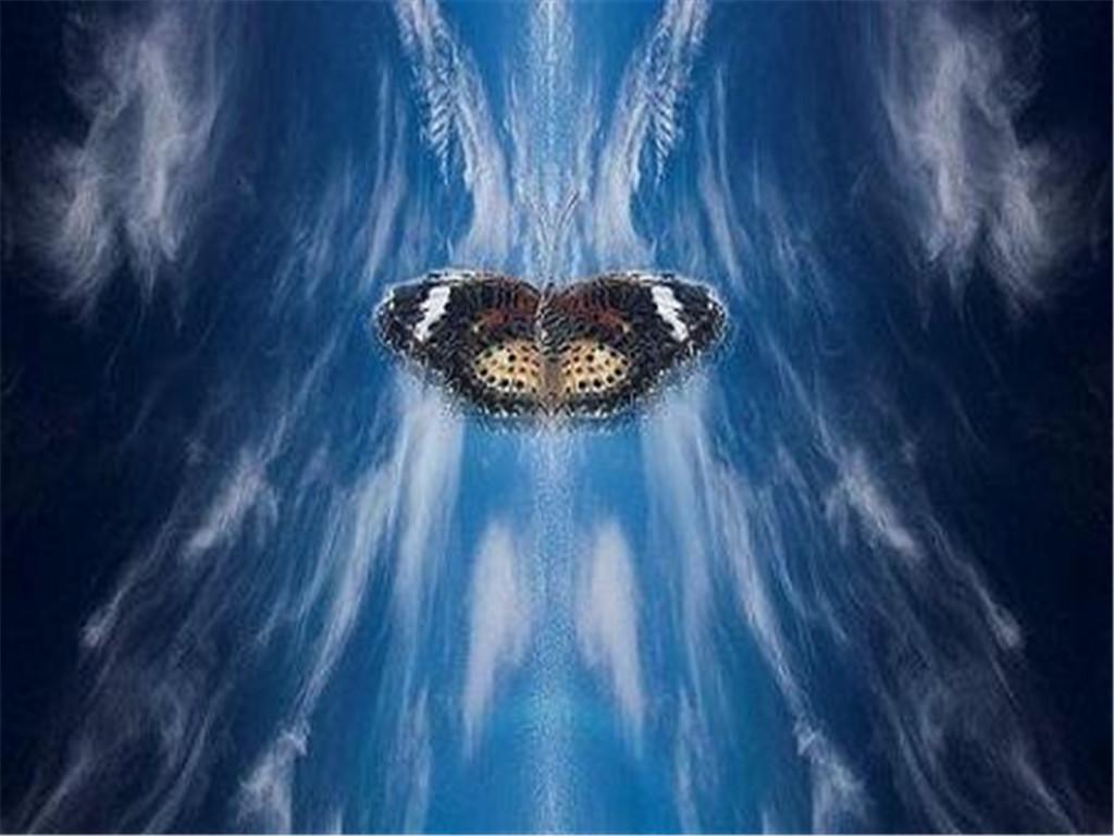 什么是蝴蝶原理_蝴蝶比是什么样子图片