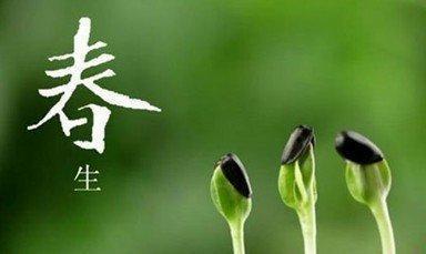 春季万物生发适合吃芽菜,可所有的芽菜都能吃吗?今天给你说清楚