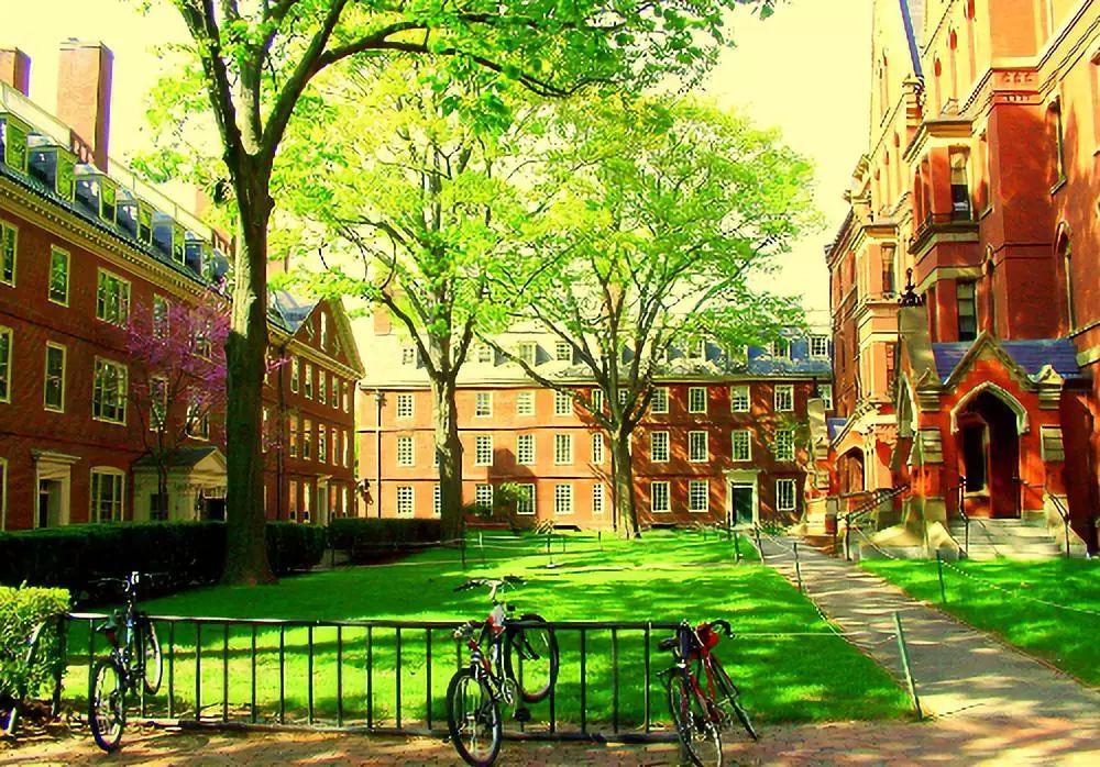 世界大学最新排名:北大清华差一点跌出世界百强名校!
